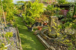 Grand choix de plantes pour votre jardin.