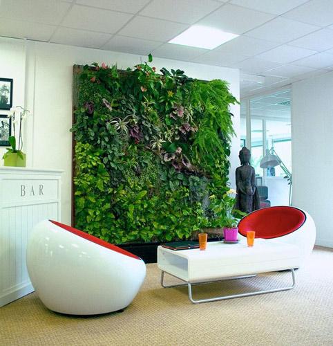 De l'entretien aux projets de jardin innovants