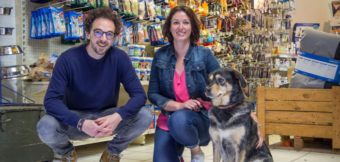 Aquanimal et Mirko comportementalisme canin