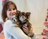 Esthétichien, toujours plus loin dans le bien-être canin