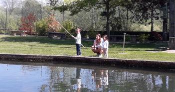 Pêche à la truite en Meuse
